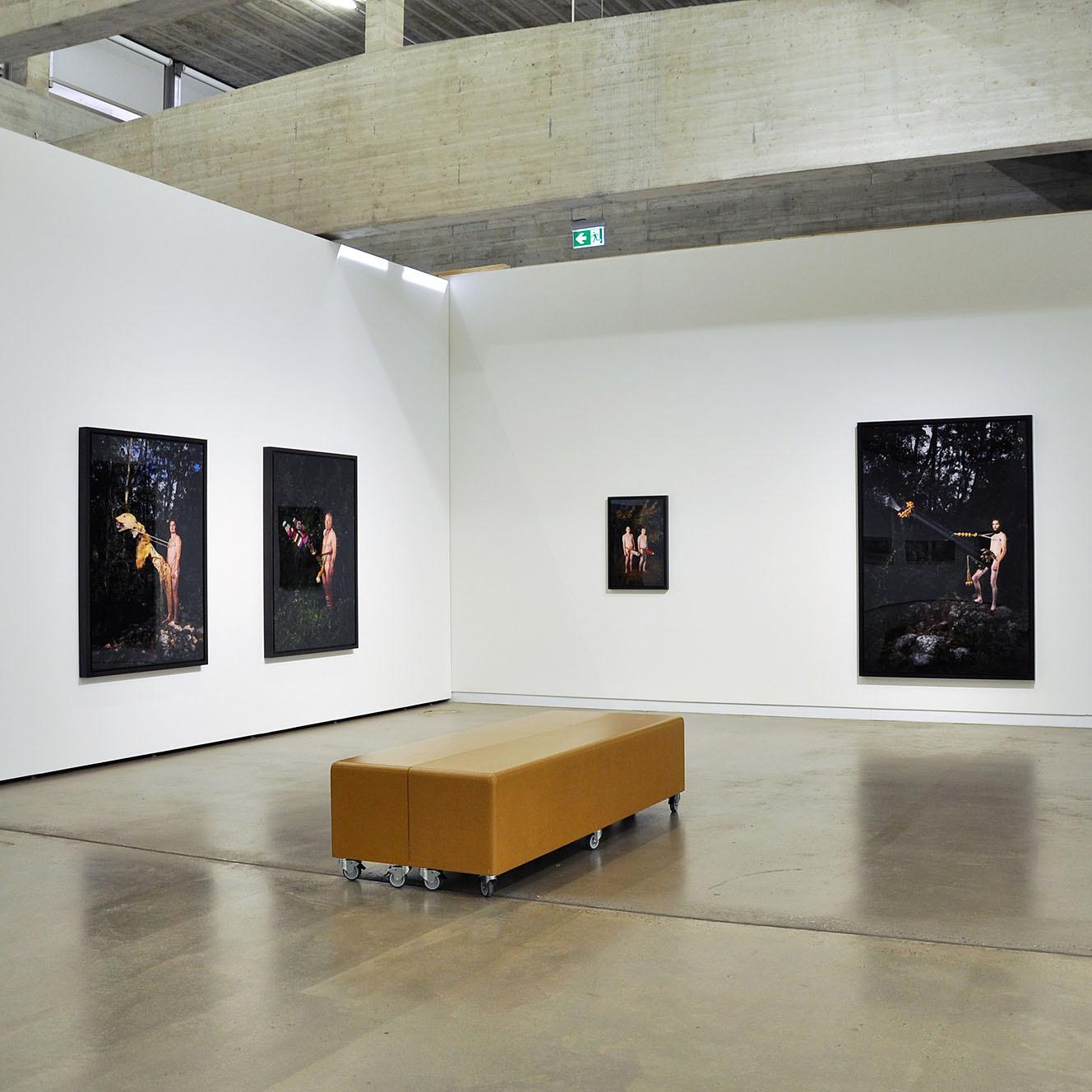 Exhibitions 2019 - 2020